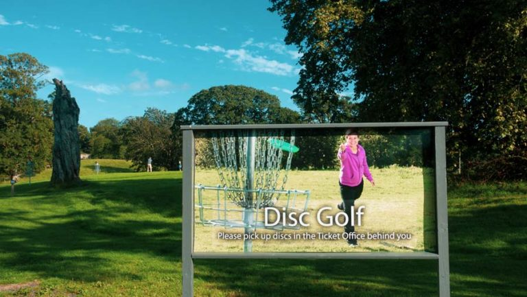 Disc Golf ireland