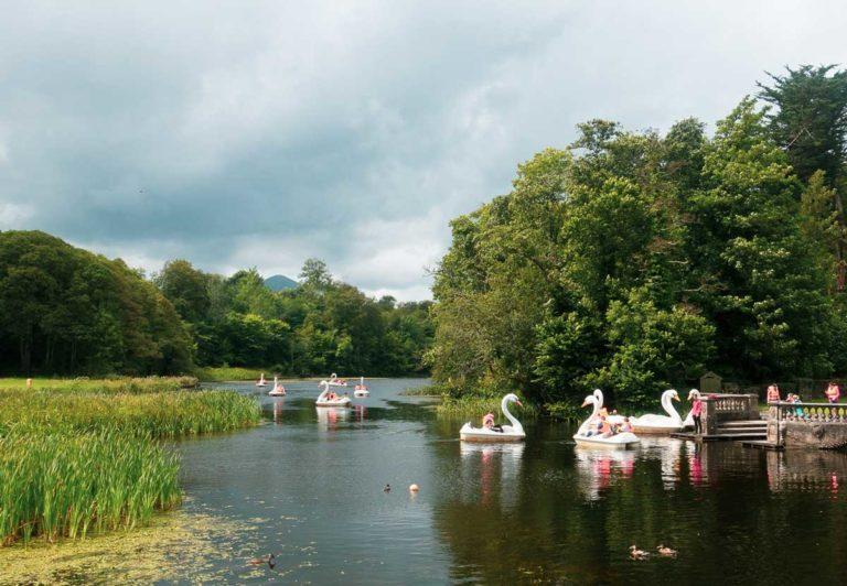 on swans kids lake westport house