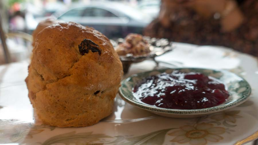 scone and jam at cupan tae westport