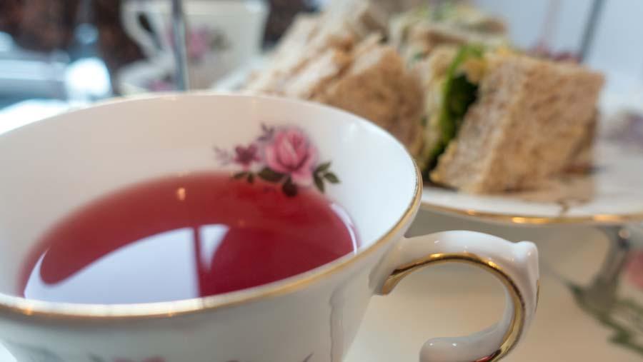 Afternoon Tea at Cúpan Tae
