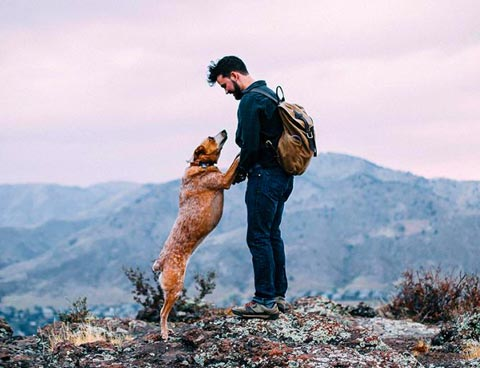 man and dog hiking